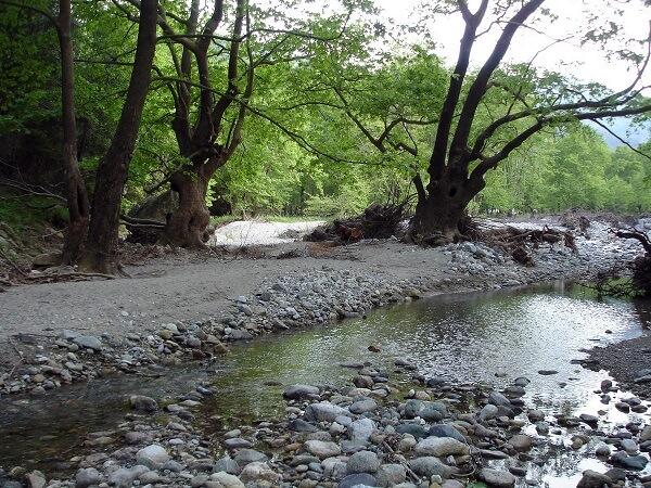 camping χιλιαδού ποτάμι εύβοια