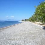 εικόνα παραλία ροβιές εύβοια